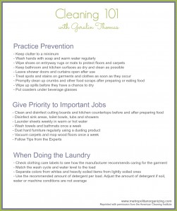 Cleaning 101- Beyond the Basics